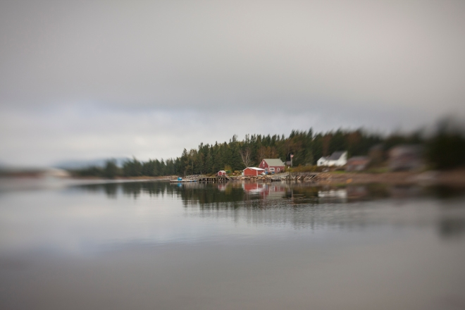 2011_Gill_Maine_4